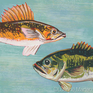 bass and walleye fish painting on aqua blue ground, original painting, art licensing