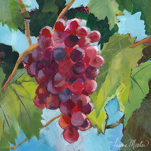 Sunny Hangout, red grapes high quality art print