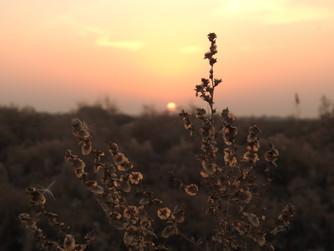 Naturopatía ¿Pedalear, ayunar y curarse a la vez, es factible?