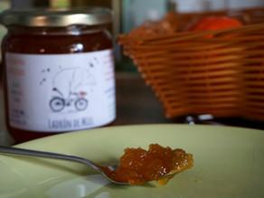 ¿Por qué se cristaliza la miel?