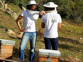 Eco-camisetas para Eco-proyectos