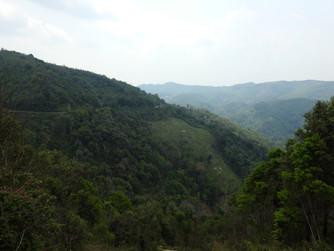 Últimos kilómetros en Laos. Camino de la frontera a Vietnam.