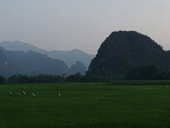 Cuc Phuong and Van Long