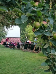 Enchanted Cimema at the Orchards