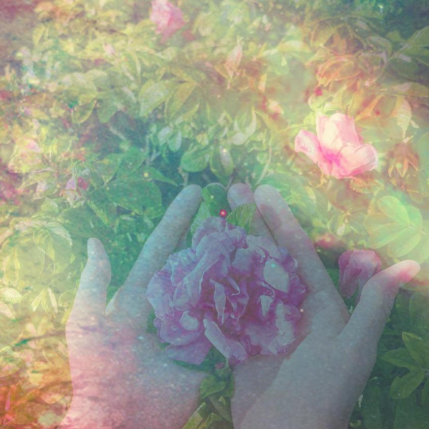 Remembering Self Love as Medicine - Free Transmission
