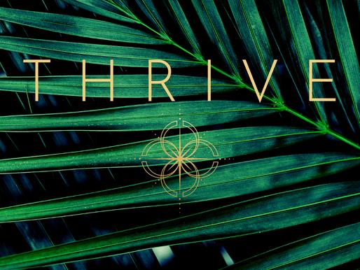 Thrive - A webinar on Manifesting Abundance