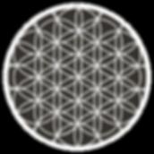 Copy of Starlight Meditation.png