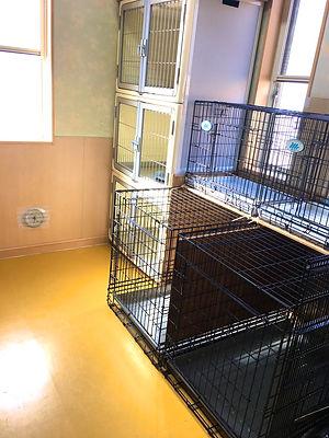 ホテル室 大型犬も泊まれる大きいケージ