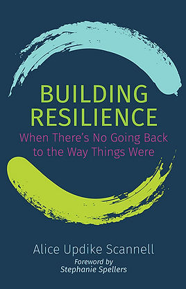 Building Resilience book cover—web.jpg