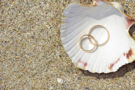 clamshell and rings.jpg