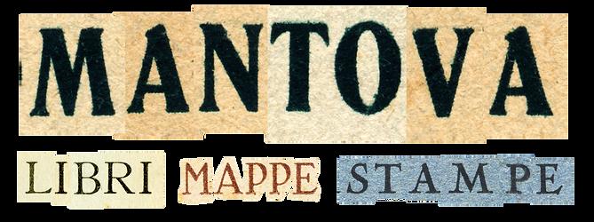 MN_logo trasp.png