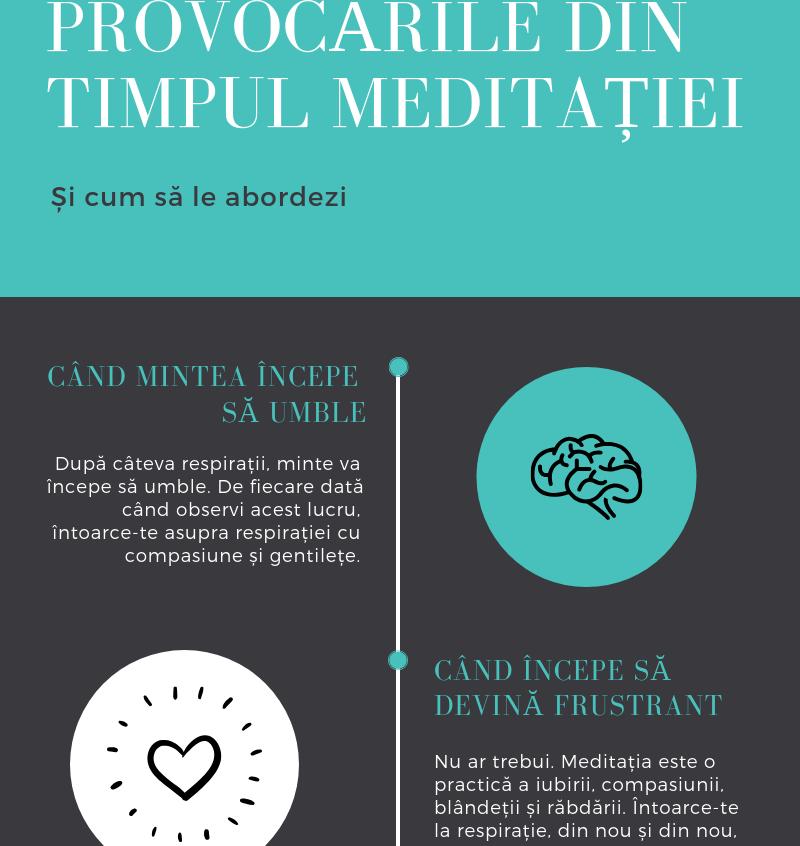 Provocarile meditatiei p I