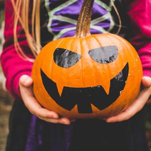 Programme automne des stages et animations enfants !