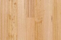 Raw Hardwood1.png