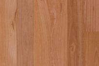 Raw Hardwood4.png