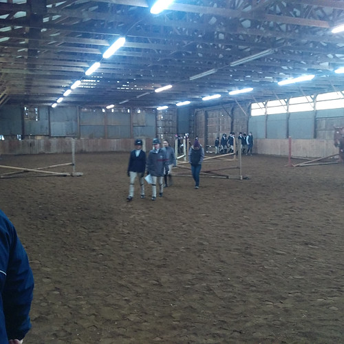 Bloomfield Stables
