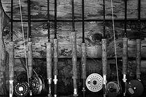 Fishing%20Rods%20_edited.jpg