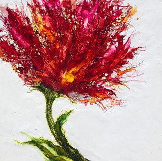 Blooms of Life II