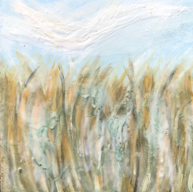 Within the Seagrass II
