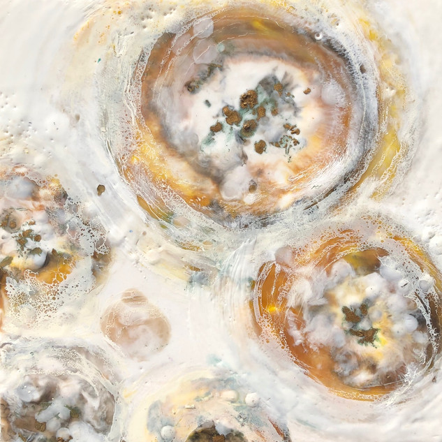 Burst of Oyster