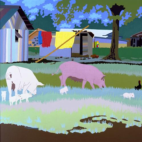 Tonga Pigs