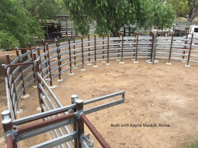 Steel cattle yards