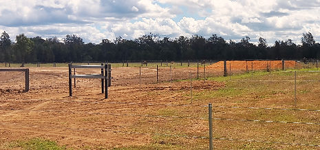 Horse fencing | Steel posts and star pickets