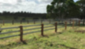 Simple horse fence
