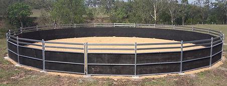 Stallion horse fencing