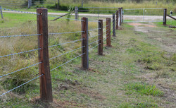 Split posts with 5-barb fence