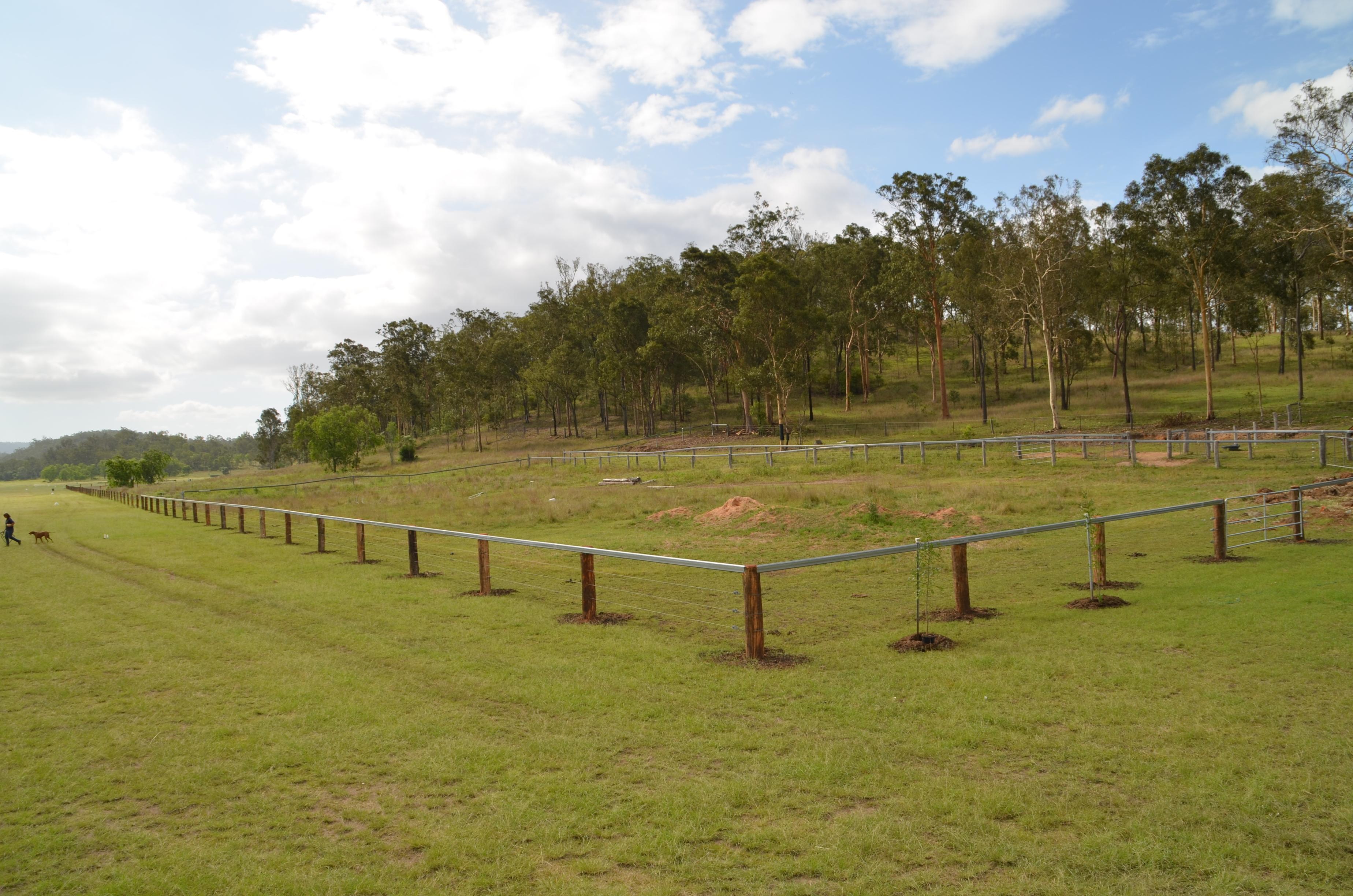 Stallion fence