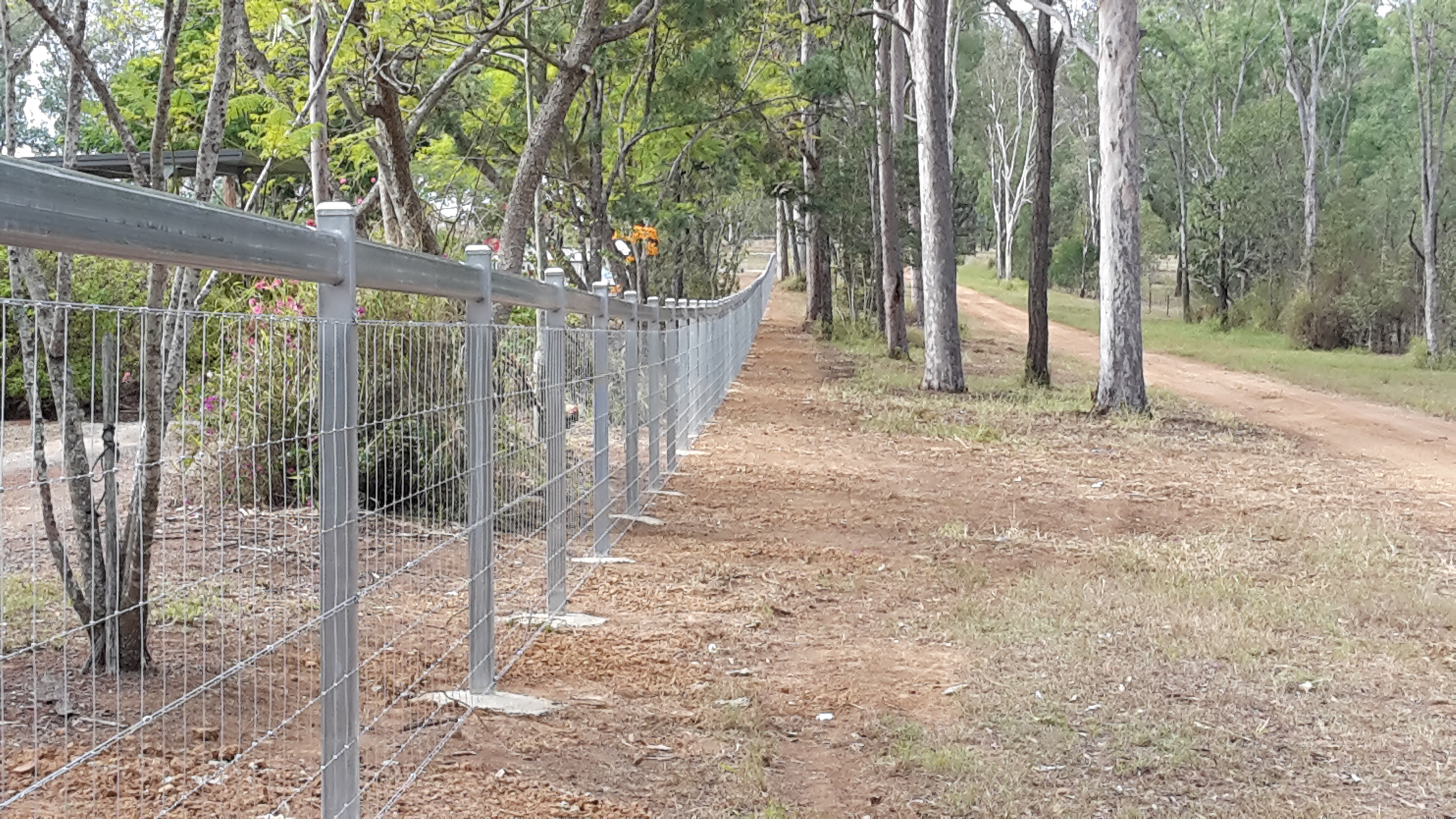 Steel fencing with mesh