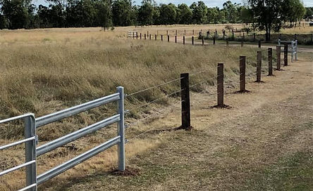 Split posts and 5 barb fence