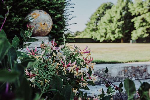 The Manor House Garden