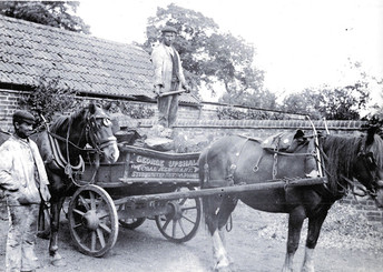 Coal Merchant at Rosies Yard