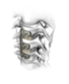 Verteview image.png
