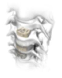 Rebar Image cropped.jpg