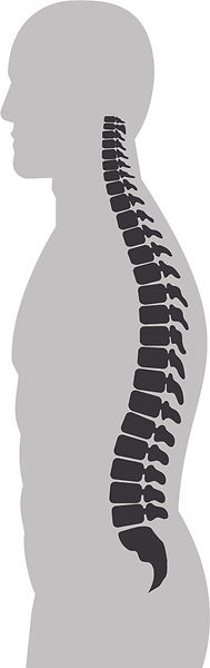 Spine Sagittal Alignment