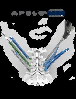Apelo MIS web image with logo