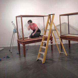 Exhibition Curation