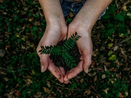 How should brands market their sustainability efforts?