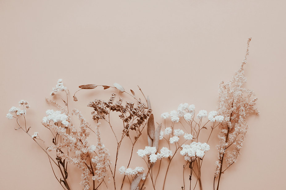 romantic-dried-flowers-on-pink-backgroun