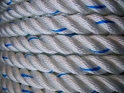 polyester laid rope.jpg