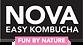 nova logo-01 (2).png