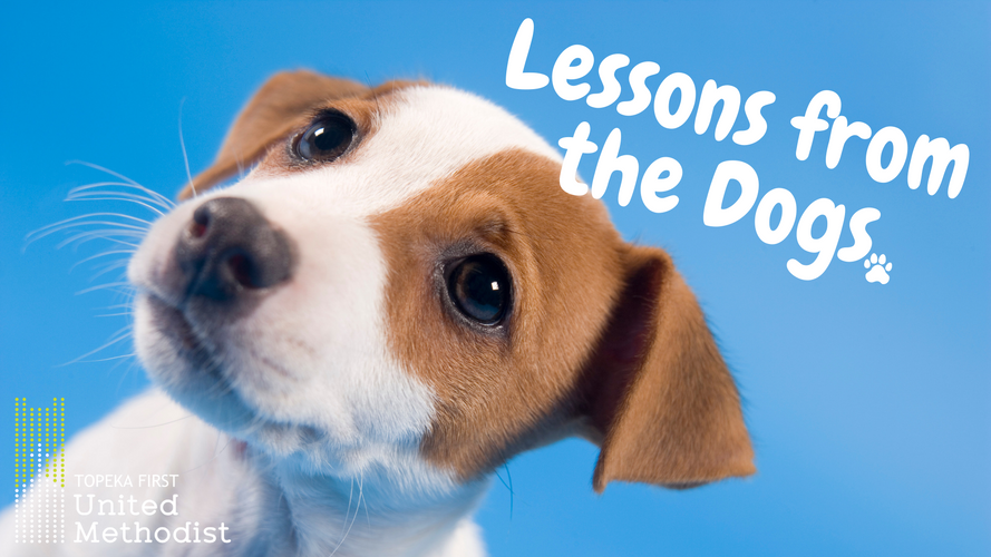 Lessons from the Dogs SS Title.png