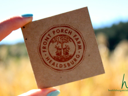 Fall Wine Pick Up Party & Harvest Market | Front Porch Farm