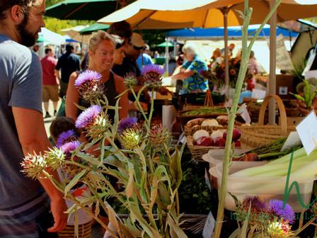 HGB Farmers Market | Saturday 7.9.16