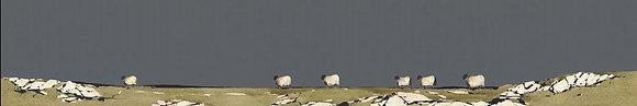 'Wandering Sheep' by Ron Lawson