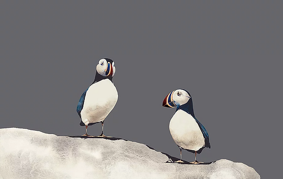 'Lunga Puffins' by Ron Lawson