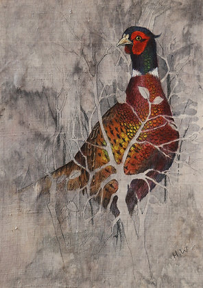 'Pheasant' by Helen Welsh